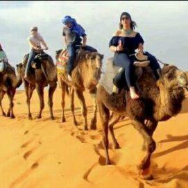 Merzouga camel trekking bivouac